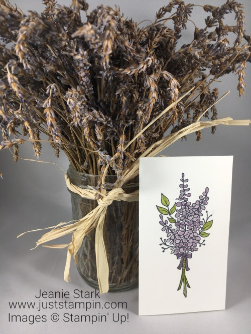 Stampin Up Lots of Lavender narrow note card gift idea - Jeanie Stark StampinUp