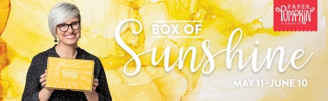 Paper Pumpkin box of Sunshine Sara Douglas