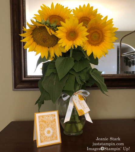 Stampin' Up! Celebrate Sunflowers card and tag gift idea - Jeanie Stark StampinUp
