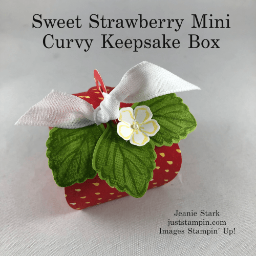 Stampin' Up! Berry Blessings Sweet Strawberry Mini Curvy Keepsake Box - Jeanie Stark StampinUp