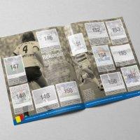 panini-msv-duisburg-album-ansicht-sticker