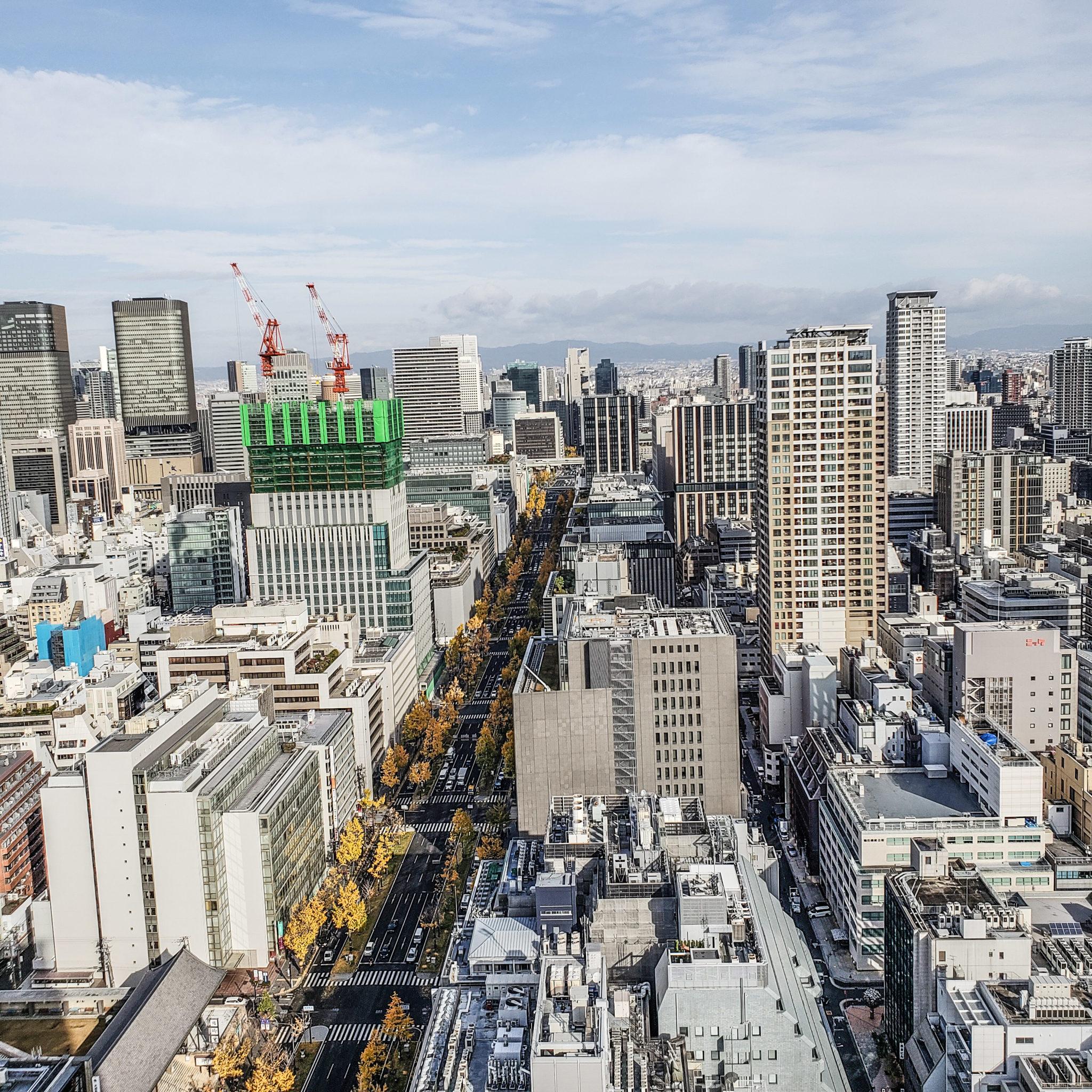 St. Regis Osaka - Butler Service - View