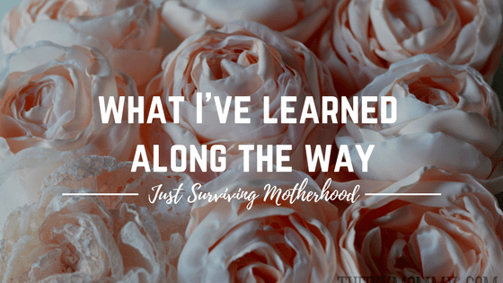 What I've Learned Along the Way…
