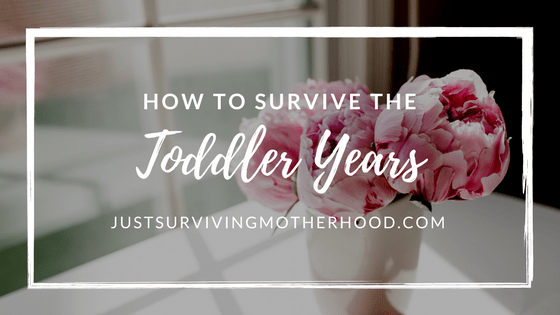 How to Survive the Toddler Years…