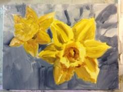 daffodilsIMG_7258