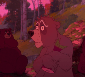 old-lady-bear