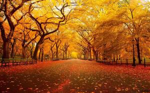 Fall Equinox Meditation