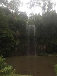 Wasserfall Cairns