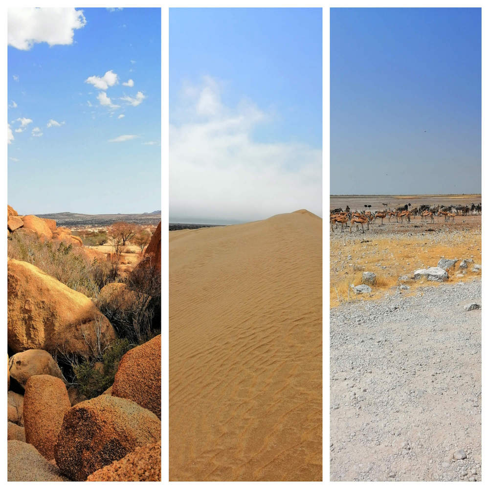 Some of the diverse scenery found around Namibia
