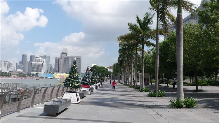 Christmas trees in tropical weather, Singapore