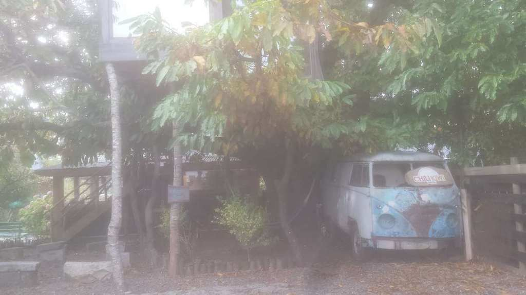 Camper van and treehouse accommodation