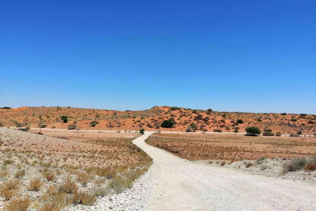 Landscape of Kgalagadi National Park, South Africa