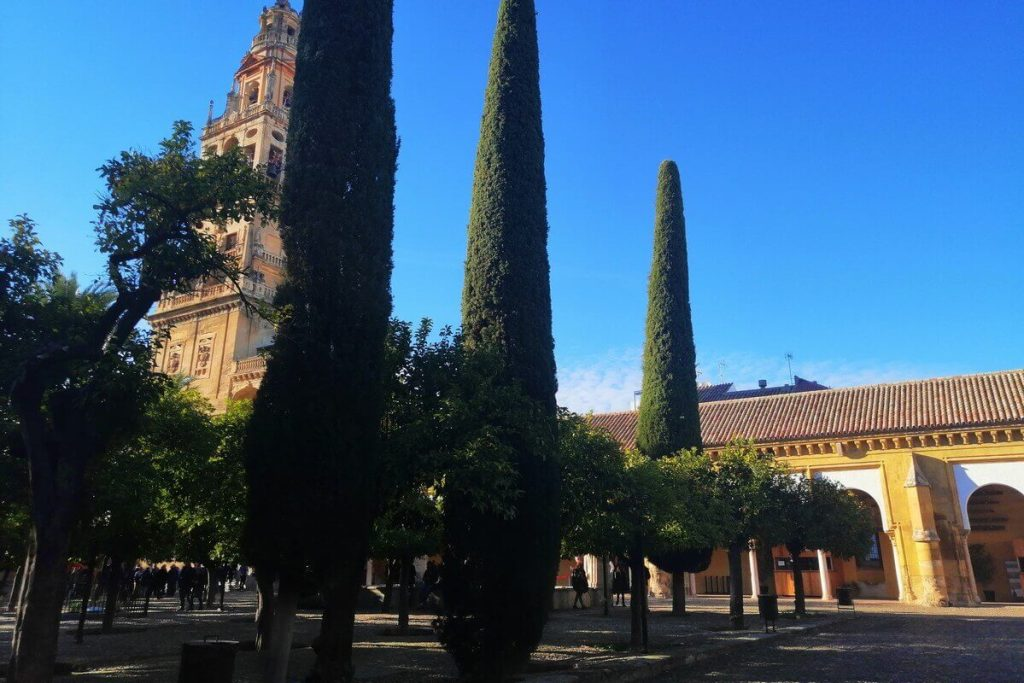 The bell tower and courtyard at La Mezquita