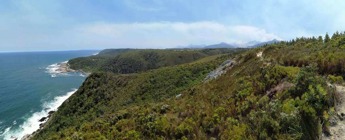 Read more about the article Your guide to the top Garden Route highlights