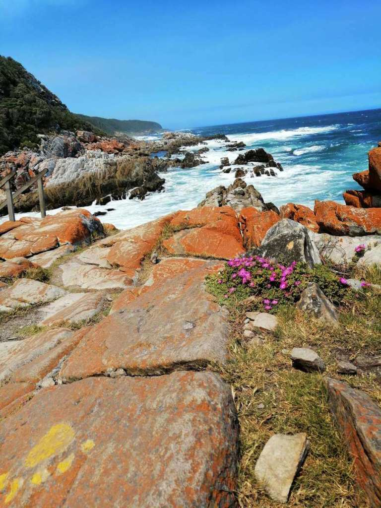 Coloured rocks against Tsitsikamma National Park coastline