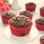 Double Chocolate Muffins - Gluten Free, Vegan
