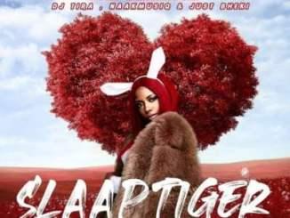 Gigi Lamayne – Slaap Tiger Ft. DJ Tira, NaakmusiQ & Just Bheki
