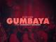 Dj Stig & Fenya - Gumbaya ft Joyonthabass & Madvwebela