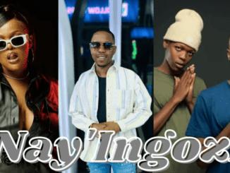 DBN Gogo, Felo Le Tee, Mellow and Sleazy - Nay'Ingozi ft Young Stunna & Sizwe Alakine