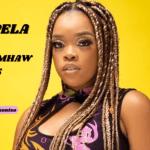 Kabza De Small & Boohle - Ngempela ft Mhaw Keys