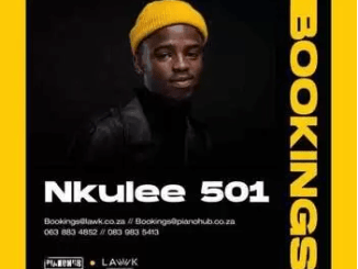 Nkulee 501 x Skroef28 – Tech 7 ft T & T MusiQ