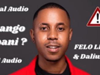 Felo Le Tee, Myztro & Mellow and Sleazy - Ntsango Kabani ft Daliwonga & Dj Sumbody