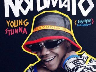 Young Stunna - Ngozi ft. Sizwe Alakine, Mellow & Sleazy