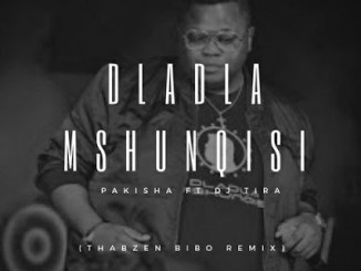 DOWNLOAD MP3 :DLADLA MSHUNQISI – PAKISHA (THABZEN BIBO REMIX)