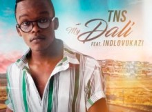 TNS-–-My-Dali-ft.-Indlovukazi-mp3TNS-–-My-Dali-ft.-Indlovukazi-mp3