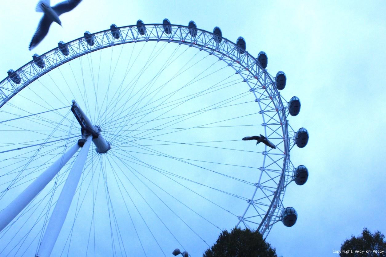 Anekha Girn London Eye