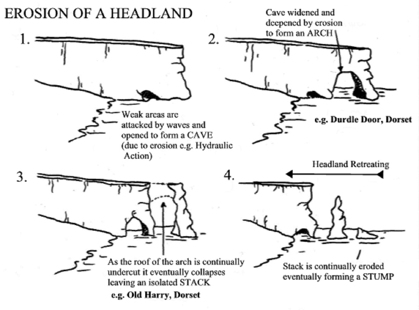 How Physical Processes Have Created Coastal Landforms