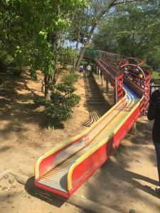 京都府立丹波自然公園 大きな長いすべり台