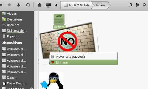 Fichero no se borra desde GNU/Linux