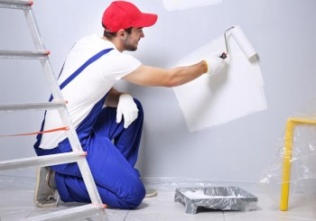 profesional pintando