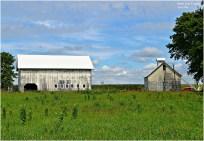 Electrified Barns, Grundy County, Illinois.