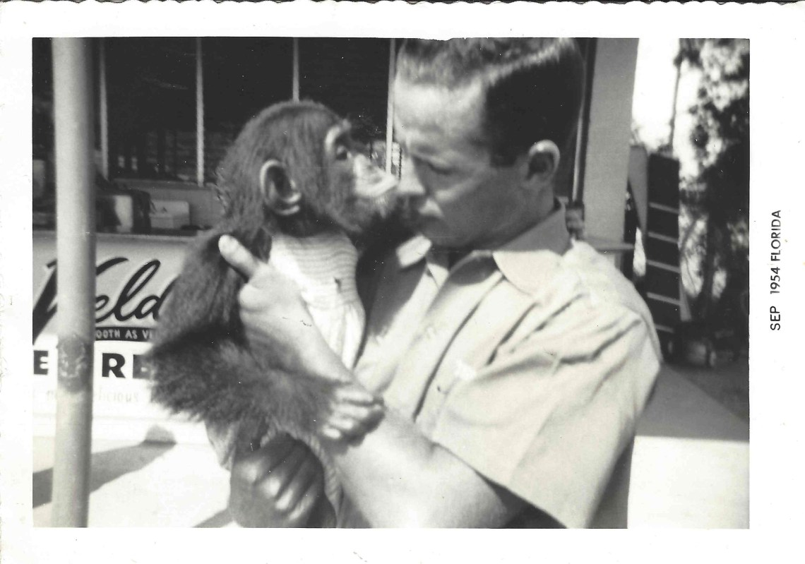 Percy & Princess Margaret the Chimp