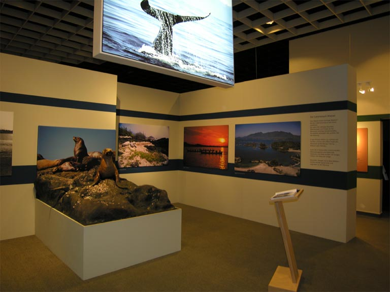 Museum display and my photos