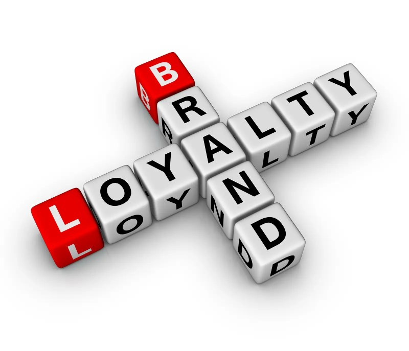 brand and customer loyalty , online reputation management