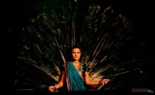 Rajput Maharani Danza del Pavone