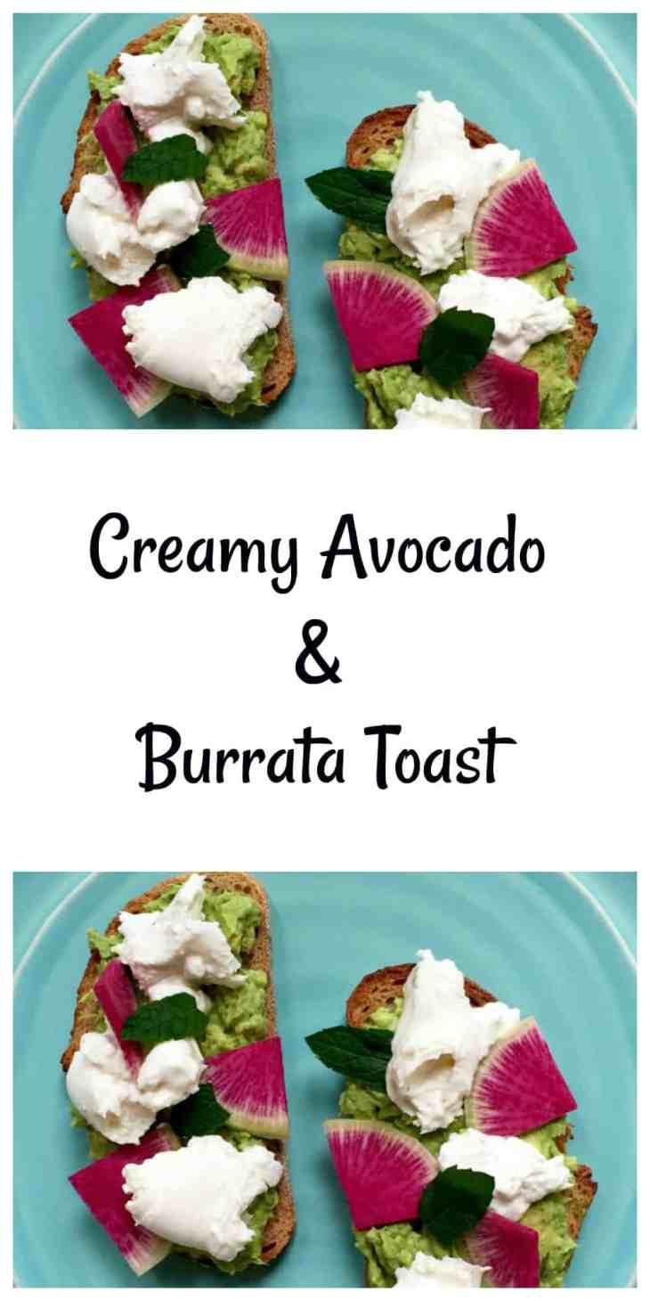 Avocado & Burrata Toast