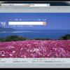 Bing の画像