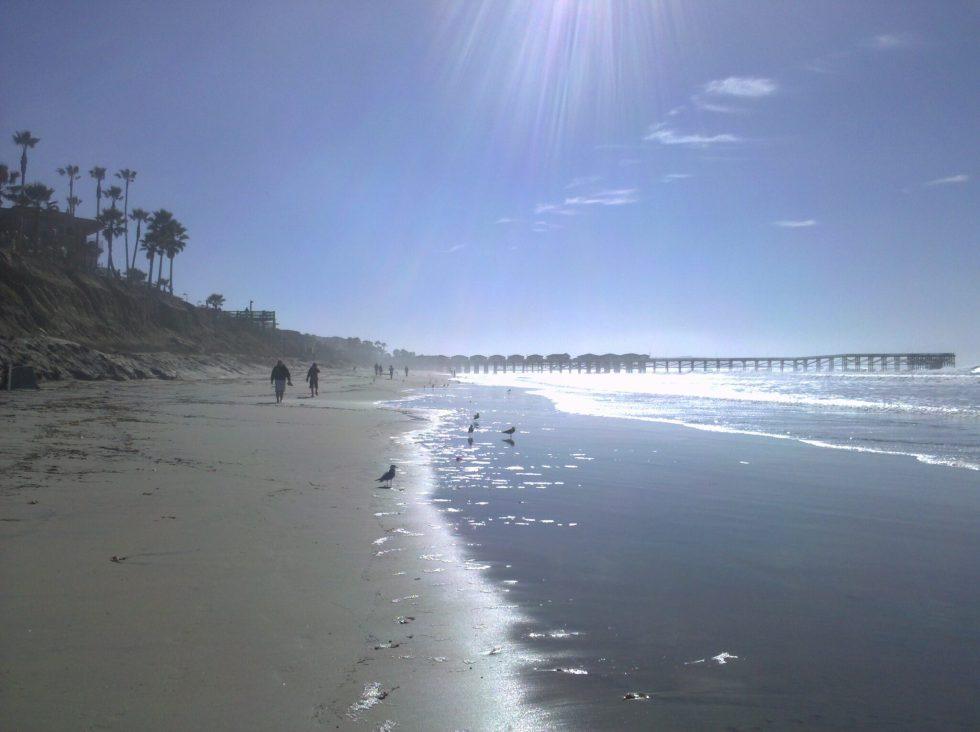 Shiny Law St Beach walk