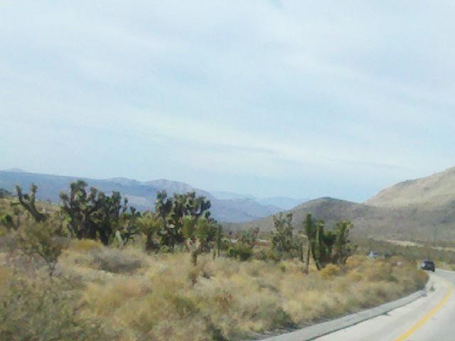 Las Vegas Desert Drive