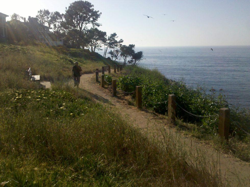 La Jolla coast walk bench beckons