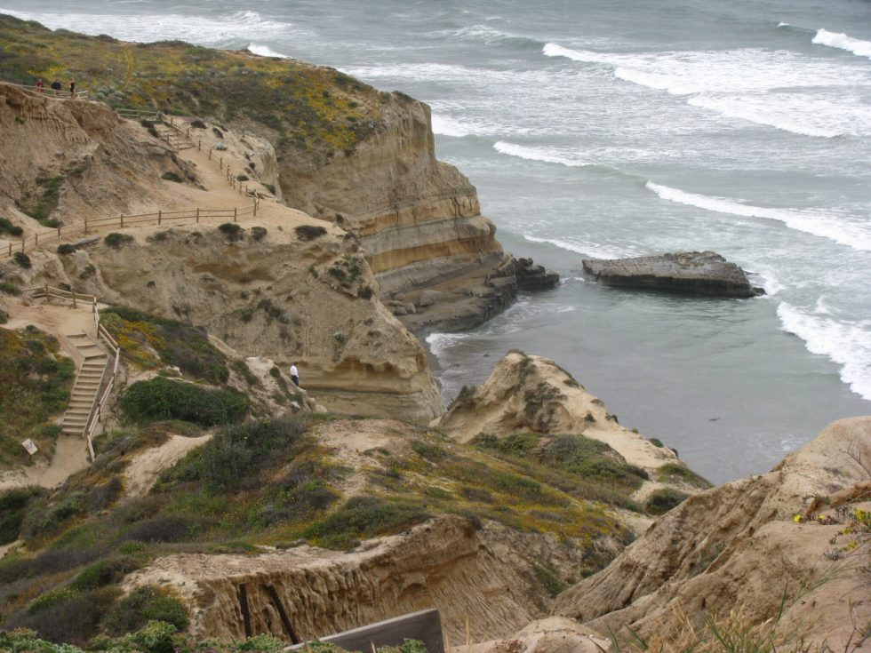 Torrey Pines State Reserve Cliff Trails