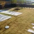 芝張り施工後
