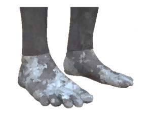 La statue de Nebucadnestar : les pieds