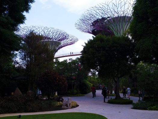 K in Motion Travel Blog. Superheroes and Supertrees in Singapore. Supertrees at the Gardens By The Bay