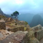K in Motion Travel Blog. Adventures In Southern Peru. Ruins and Tree at Machu Picchu, in the Andes, Peru