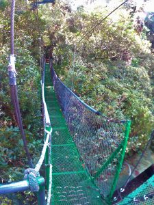 K in Motion Travel Blog. Mountain Adventures in Costa Rica. Monteverde Adventure Park Suspension Bridge